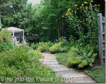 back garden entrance - July
