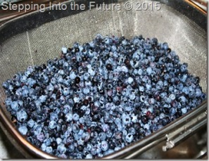 blueberries in strainer